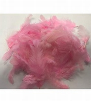 Baby Pink Feathers